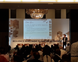 EO4SD-Urban @ World Bank City Resilience Investment Workshop 2019